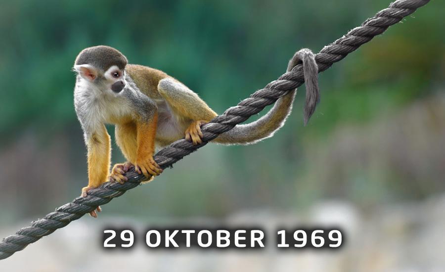 29 oktober, Internationale Internet Dag