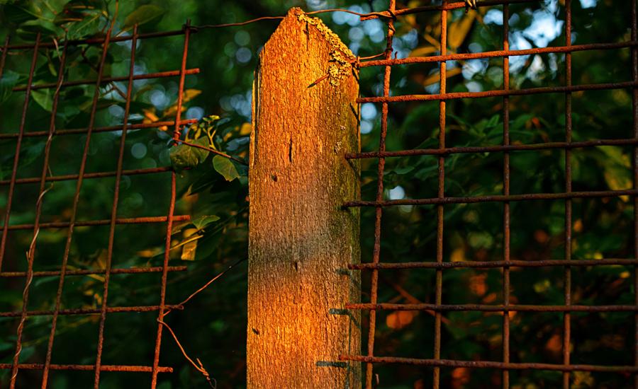 Website als zwakste schakel van het bedrijf